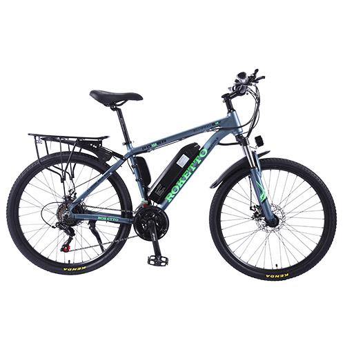 Electric Bike e-bike