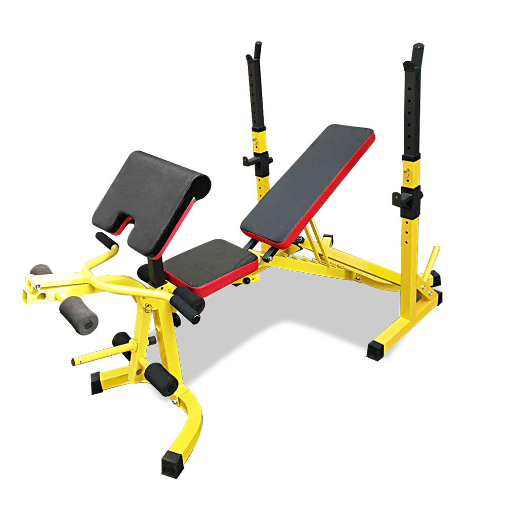 RBT308 Multi-Station Weight Bench Press Fitness Incline Gym Equipment